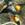 sturnus vulgaris, birding, birwatching, diospyros kaki, estornino pinto