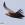 aves de Galdames, Buitre leonado, Gyps fulvus,  birding, birdwatching